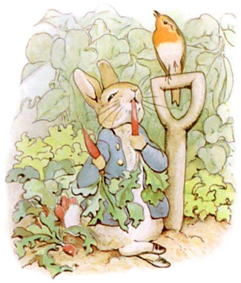 Peter Rabbit symbol